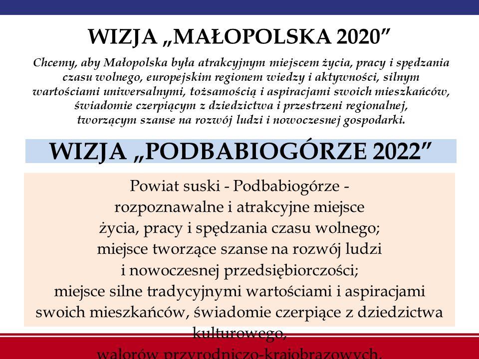 """WIZJA """"PODBABIOGÓRZE 2022"""