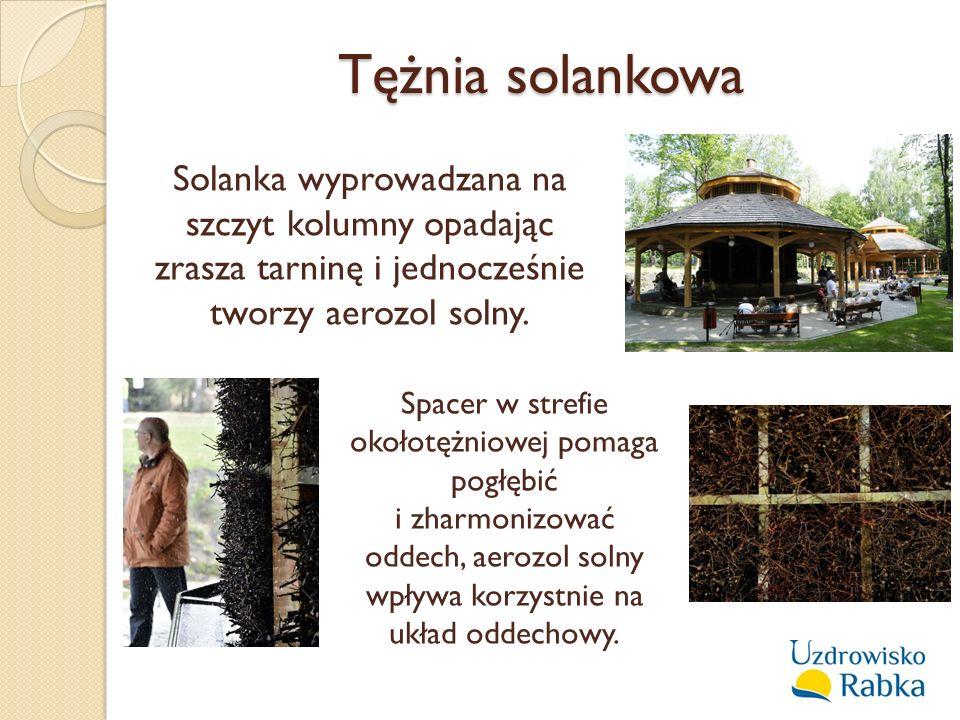 Tężnia solankowa Solanka wyprowadzana na szczyt kolumny opadając zrasza tarninę i jednocześnie tworzy aerozol solny.
