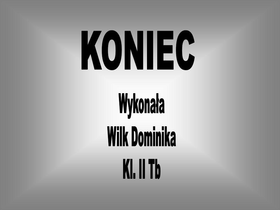 KONIEC Wykonała Wilk Dominika Kl. II Tb