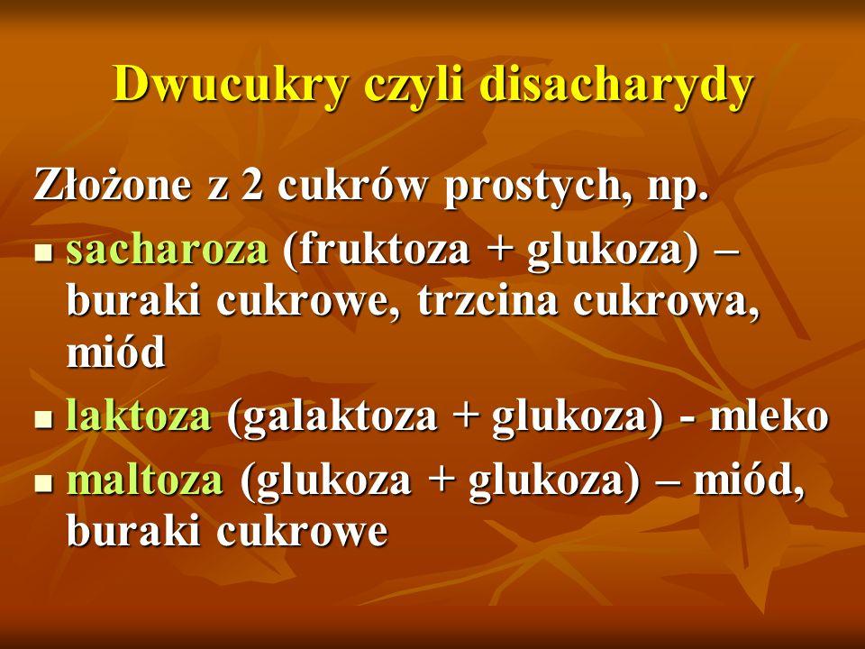 Dwucukry czyli disacharydy