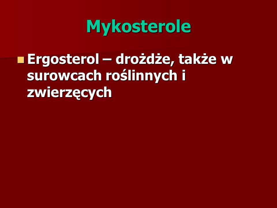 Mykosterole Ergosterol – drożdże, także w surowcach roślinnych i zwierzęcych
