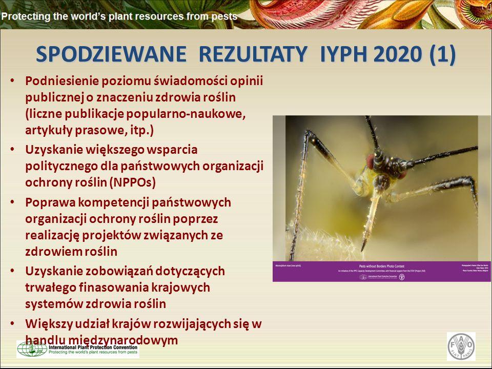 SPODZIEWANE REZULTATY IYPH 2020 (1)