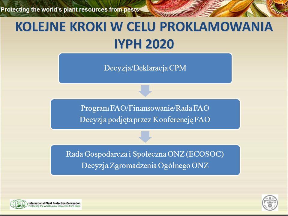 KOLEJNE KROKI W CELU PROKLAMOWANIA IYPH 2020