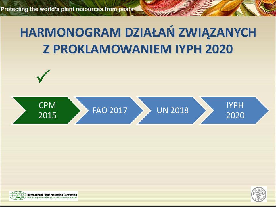 HARMONOGRAM DZIAŁAŃ ZWIĄZANYCH Z PROKLAMOWANIEM IYPH 2020