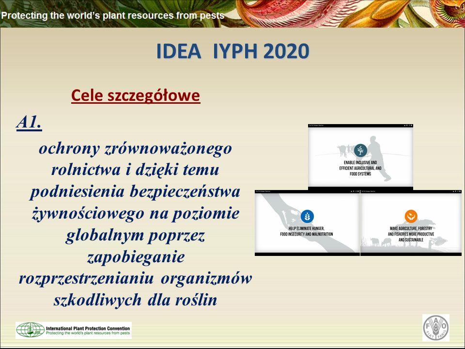 IDEA IYPH 2020 Cele szczegółowe A1.