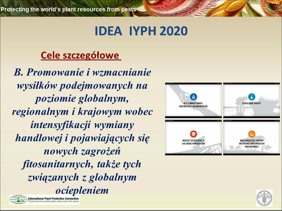 IDEA IYPH 2020 Cele szczegółowe