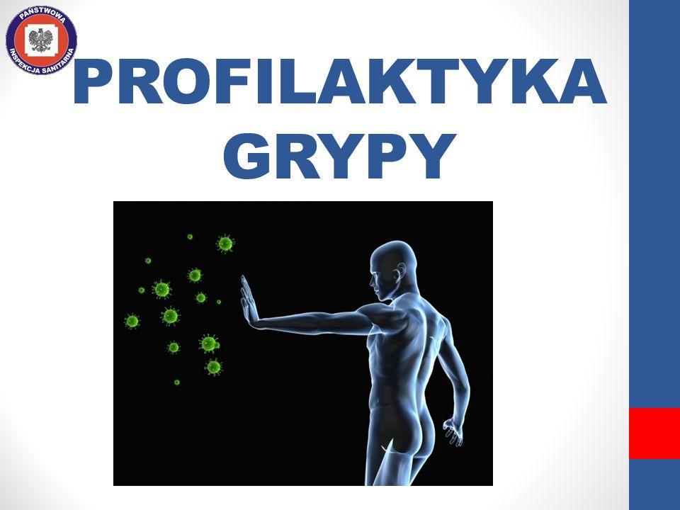 PROFILAKTYKA GRYPY