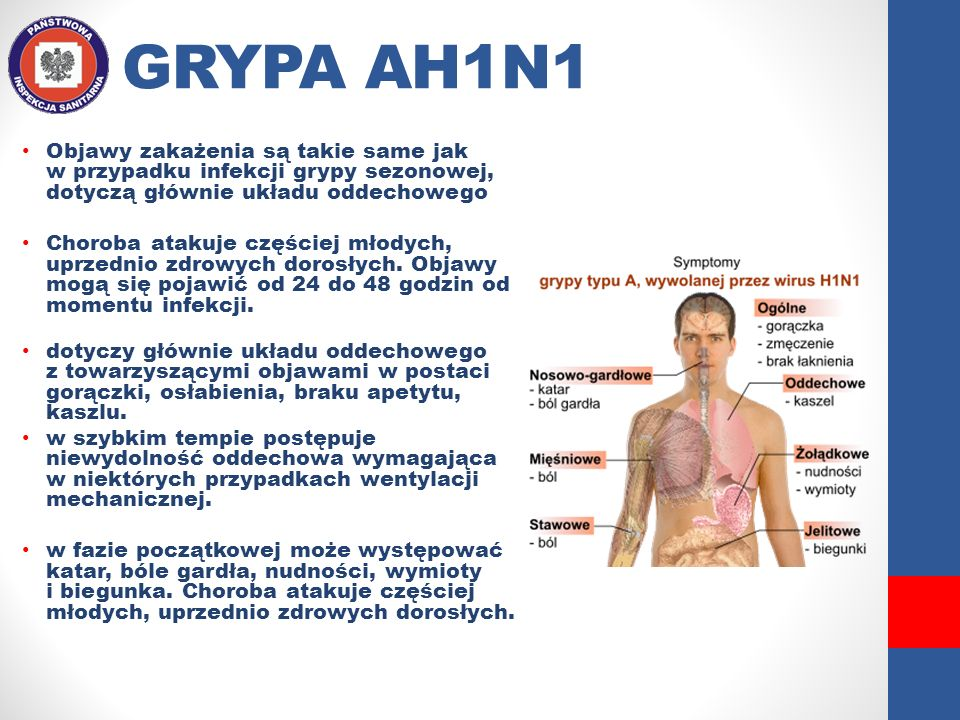 GRYPA AH1N1 Objawy zakażenia są takie same jak w przypadku infekcji grypy sezonowej, dotyczą głównie układu oddechowego.