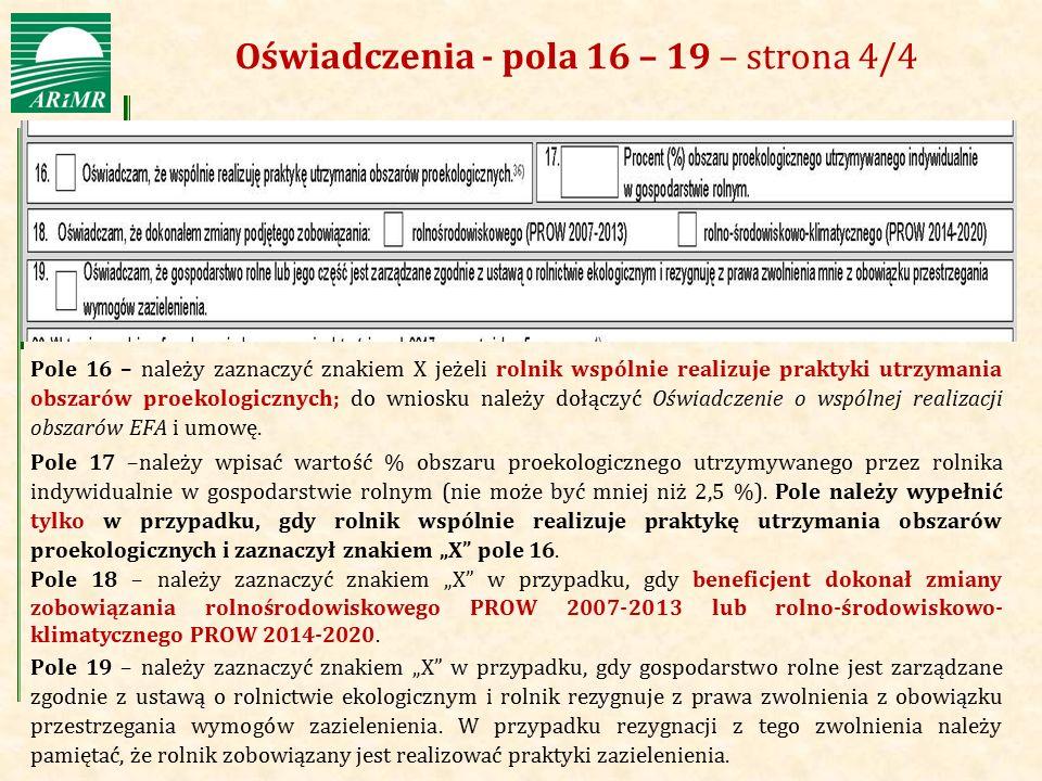 Oświadczenia - pola 16 – 19 – strona 4/4