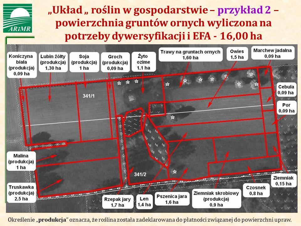 """""""Układ """" roślin w gospodarstwie – przykład 2 – powierzchnia gruntów ornych wyliczona na potrzeby dywersyfikacji i EFA - 16,00 ha"""