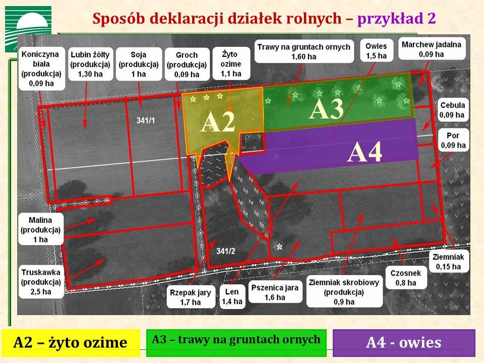A3 A2 A4 Sposób deklaracji działek rolnych – przykład 2