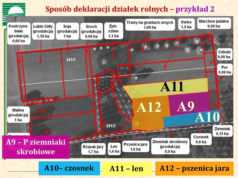 A11 A12 A9 A10 Sposób deklaracji działek rolnych – przykład 2