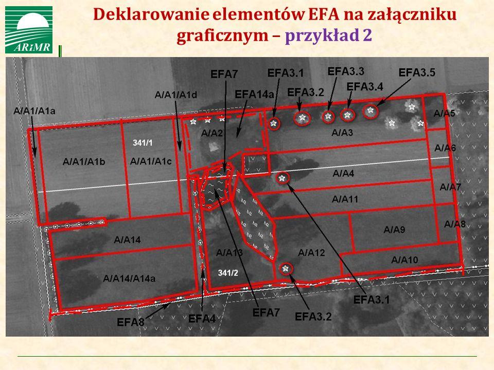 Deklarowanie elementów EFA na załączniku graficznym – przykład 2