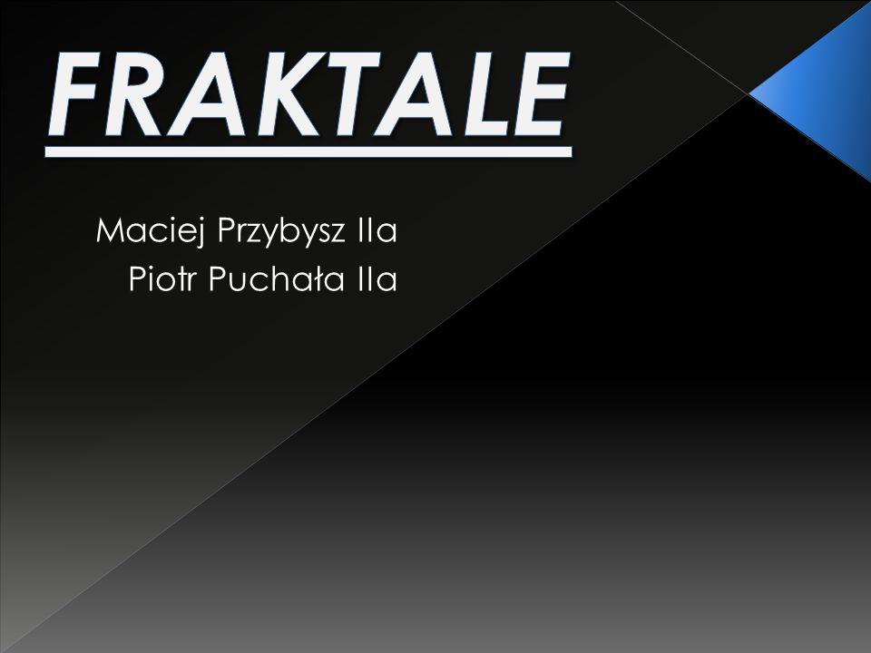 FRAKTALE Maciej Przybysz IIa Piotr Puchała IIa