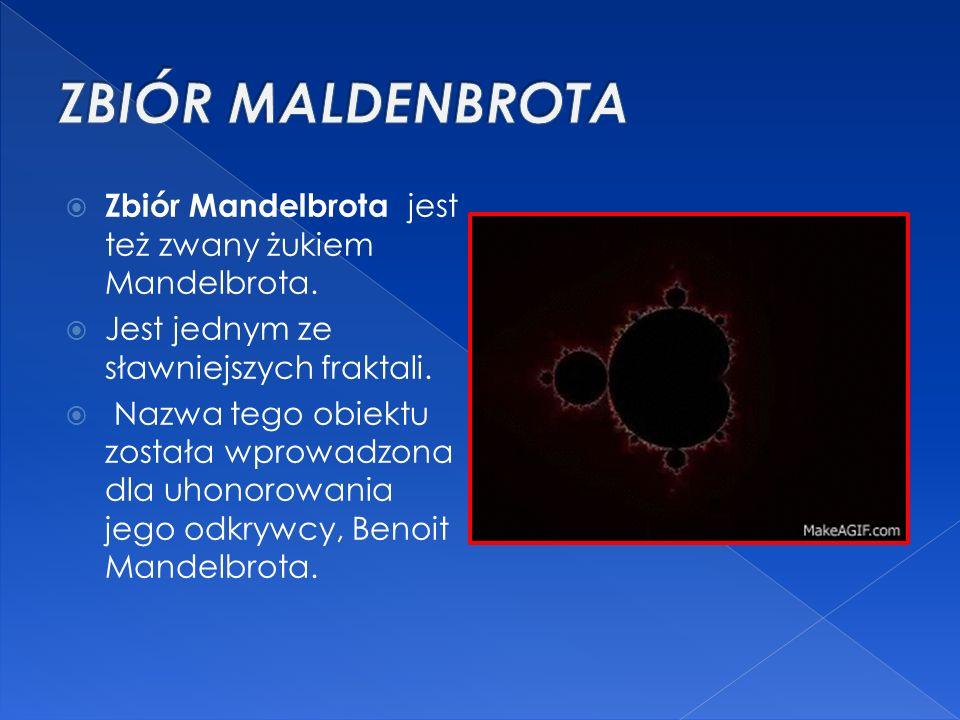 ZBIÓR MALDENBROTA Zbiór Mandelbrota jest też zwany żukiem Mandelbrota.