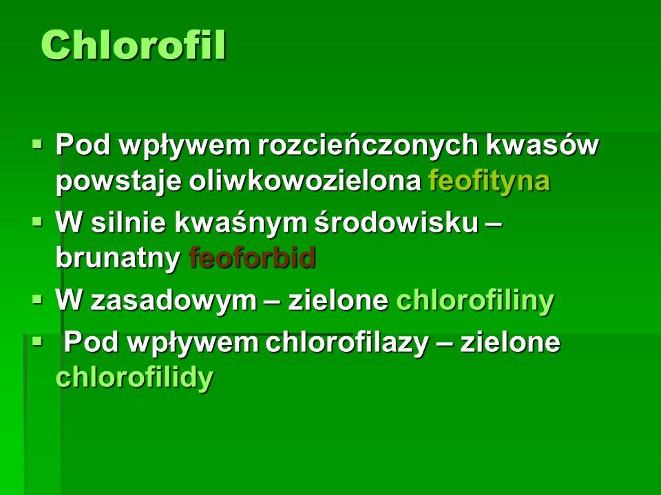Chlorofil Pod wpływem rozcieńczonych kwasów powstaje oliwkowozielona feofityna. W silnie kwaśnym środowisku – brunatny feoforbid.