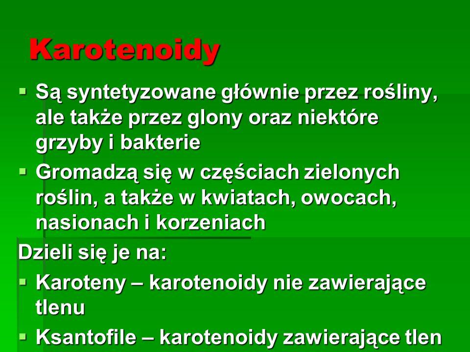 Karotenoidy Są syntetyzowane głównie przez rośliny, ale także przez glony oraz niektóre grzyby i bakterie.
