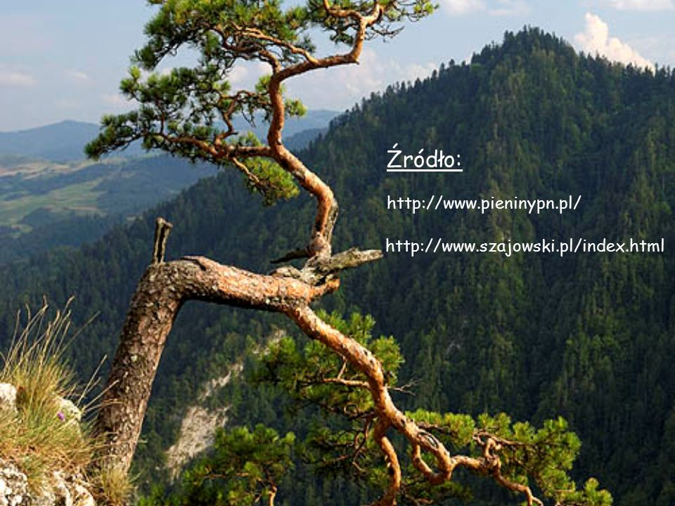 Źródło: http://www.pieninypn.pl/ http://www.szajowski.pl/index.html