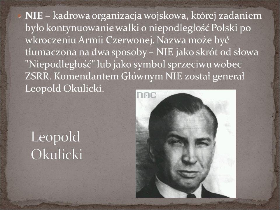 NIE – kadrowa organizacja wojskowa, której zadaniem było kontynuowanie walki o niepodległość Polski po wkroczeniu Armii Czerwonej.