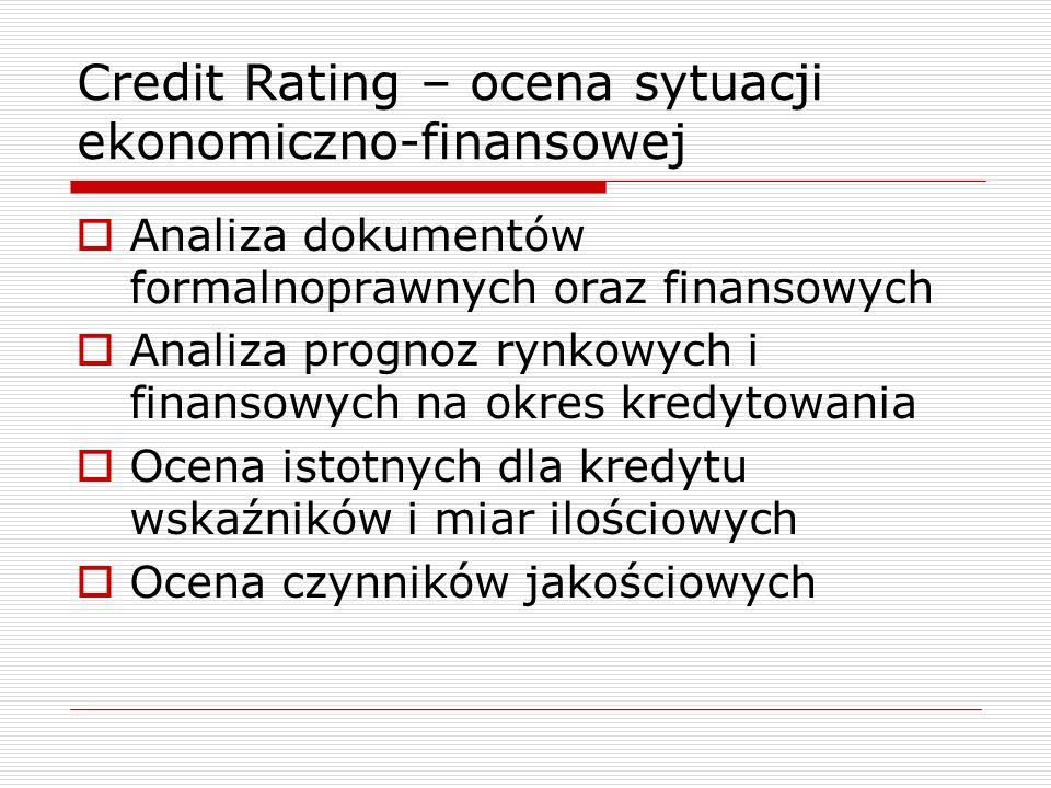 Credit Rating – ocena sytuacji ekonomiczno-finansowej