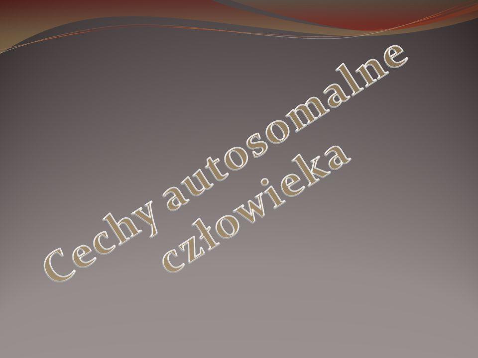 Cechy autosomalne człowieka