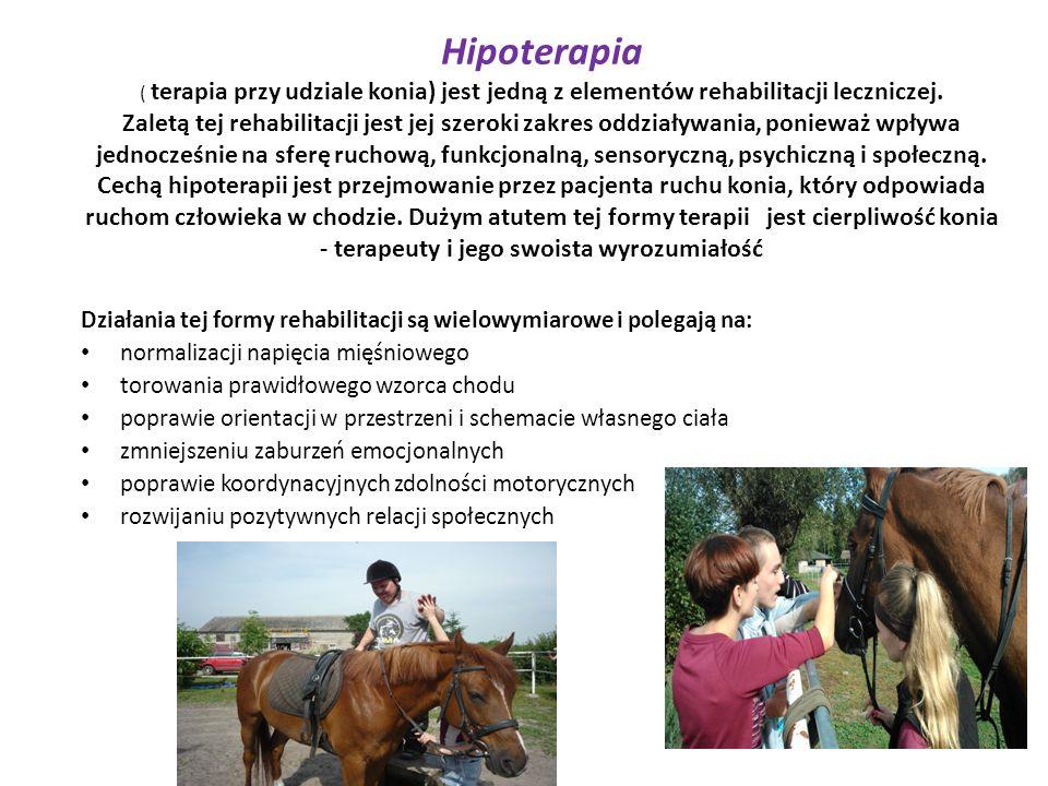 Hipoterapia ( terapia przy udziale konia) jest jedną z elementów rehabilitacji leczniczej. Zaletą tej rehabilitacji jest jej szeroki zakres oddziaływania, ponieważ wpływa jednocześnie na sferę ruchową, funkcjonalną, sensoryczną, psychiczną i społeczną. Cechą hipoterapii jest przejmowanie przez pacjenta ruchu konia, który odpowiada ruchom człowieka w chodzie. Dużym atutem tej formy terapii jest cierpliwość konia - terapeuty i jego swoista wyrozumiałość