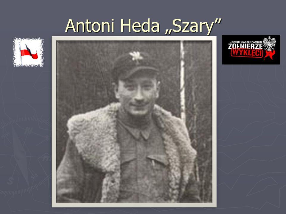 "Antoni Heda ""Szary"