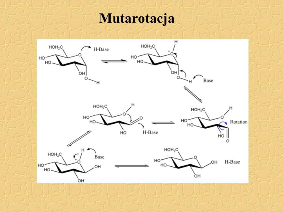 Mutarotacja