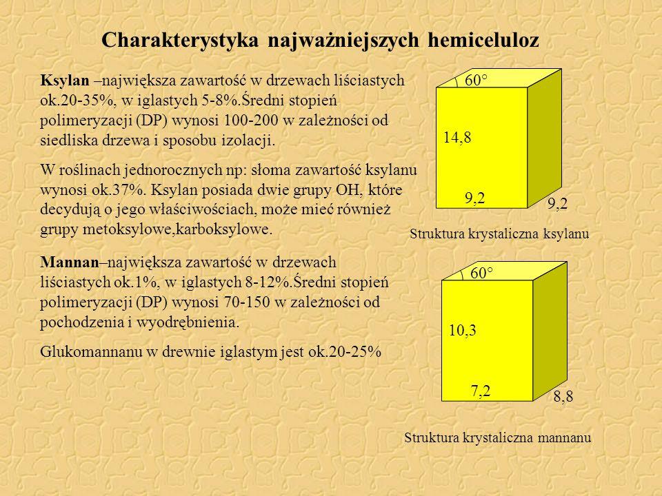 Charakterystyka najważniejszych hemiceluloz
