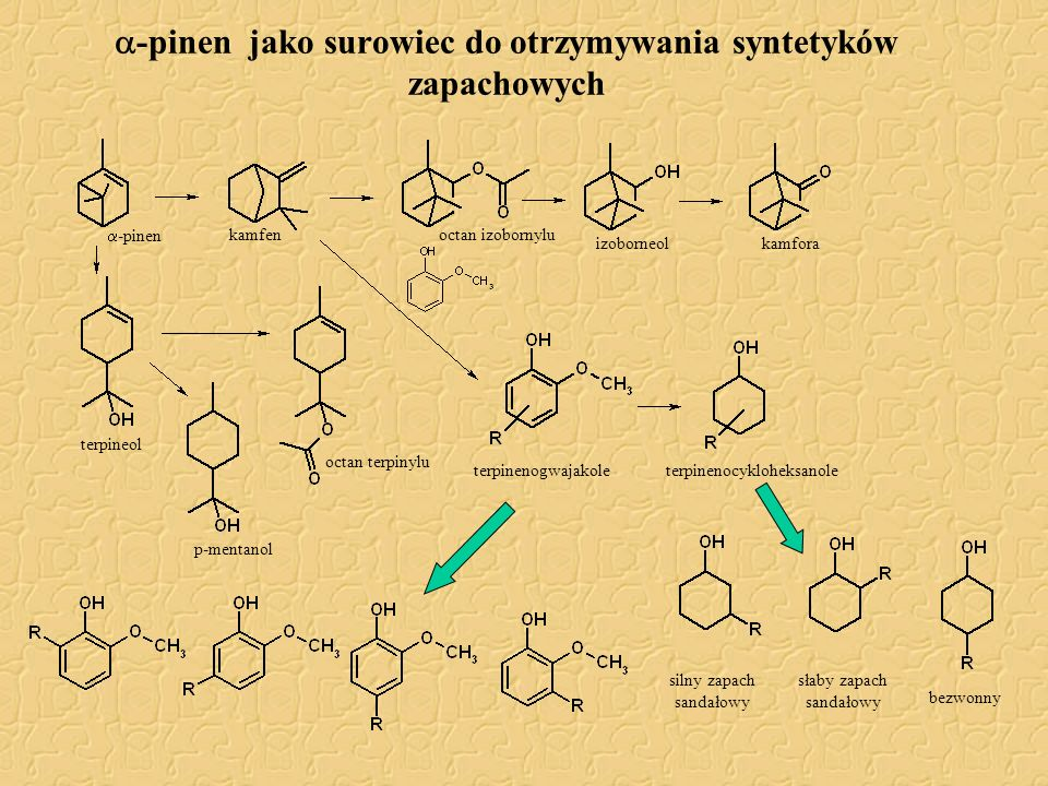 -pinen jako surowiec do otrzymywania syntetyków zapachowych