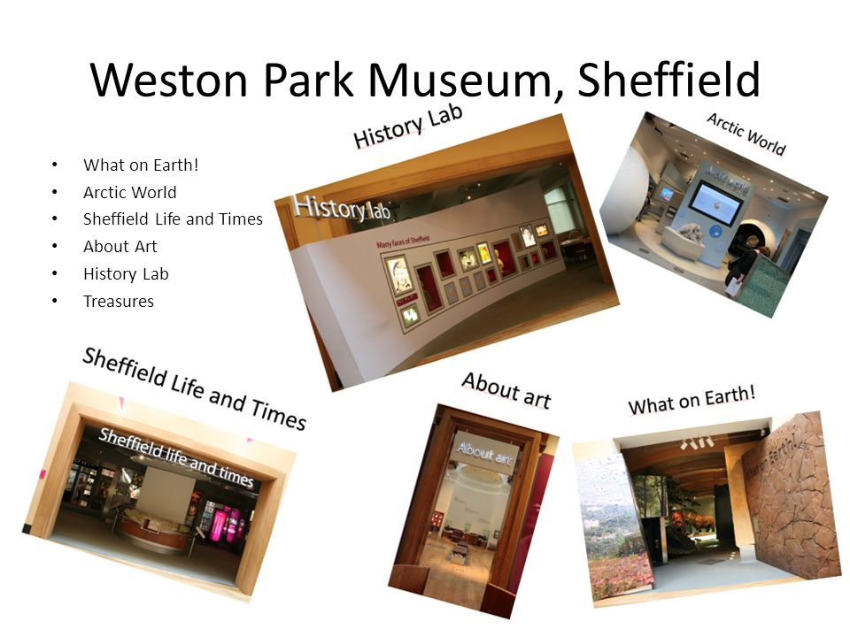 Weston Park Museum, Sheffield