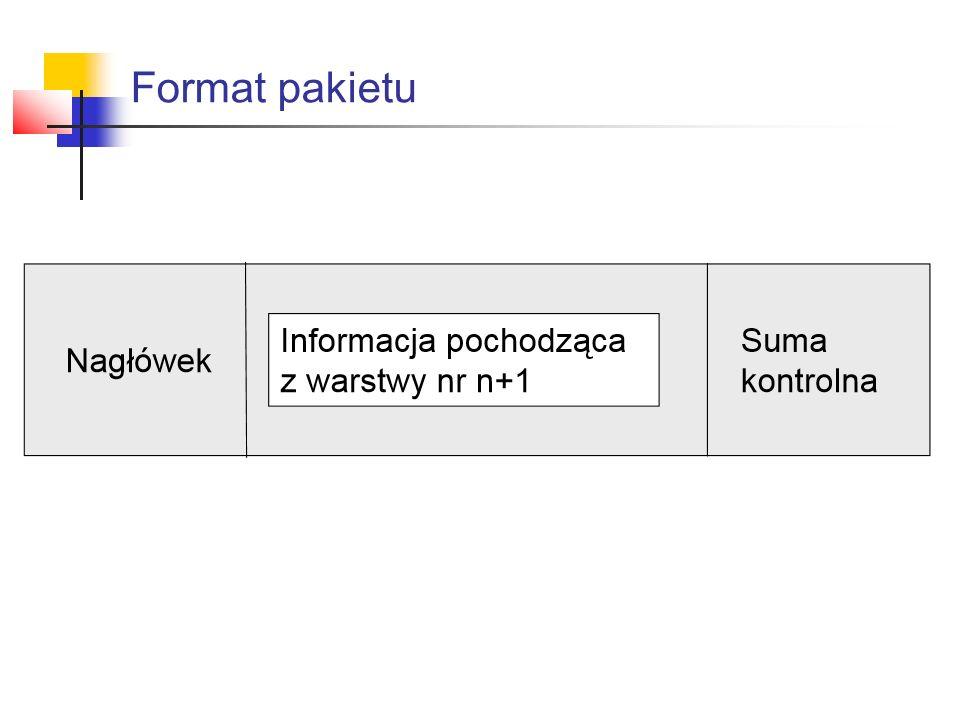 Format pakietu