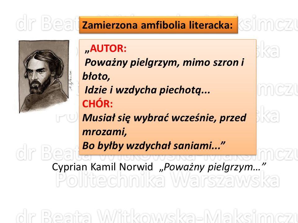 Zamierzona amfibolia literacka: