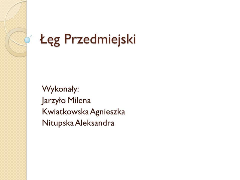 Wykonały: Jarzyło Milena Kwiatkowska Agnieszka Nitupska Aleksandra