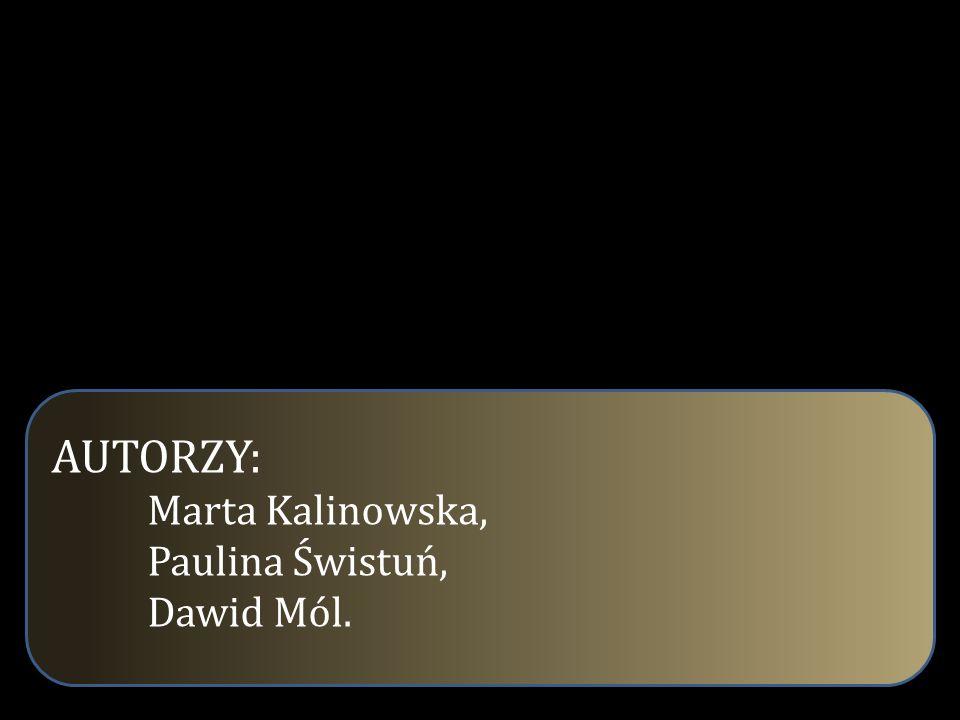 AUTORZY: Marta Kalinowska, Paulina Świstuń, Dawid Mól.