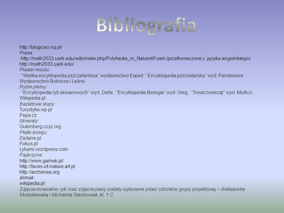 Bibliografia http://blogiceo.nq.pl/ Piana: