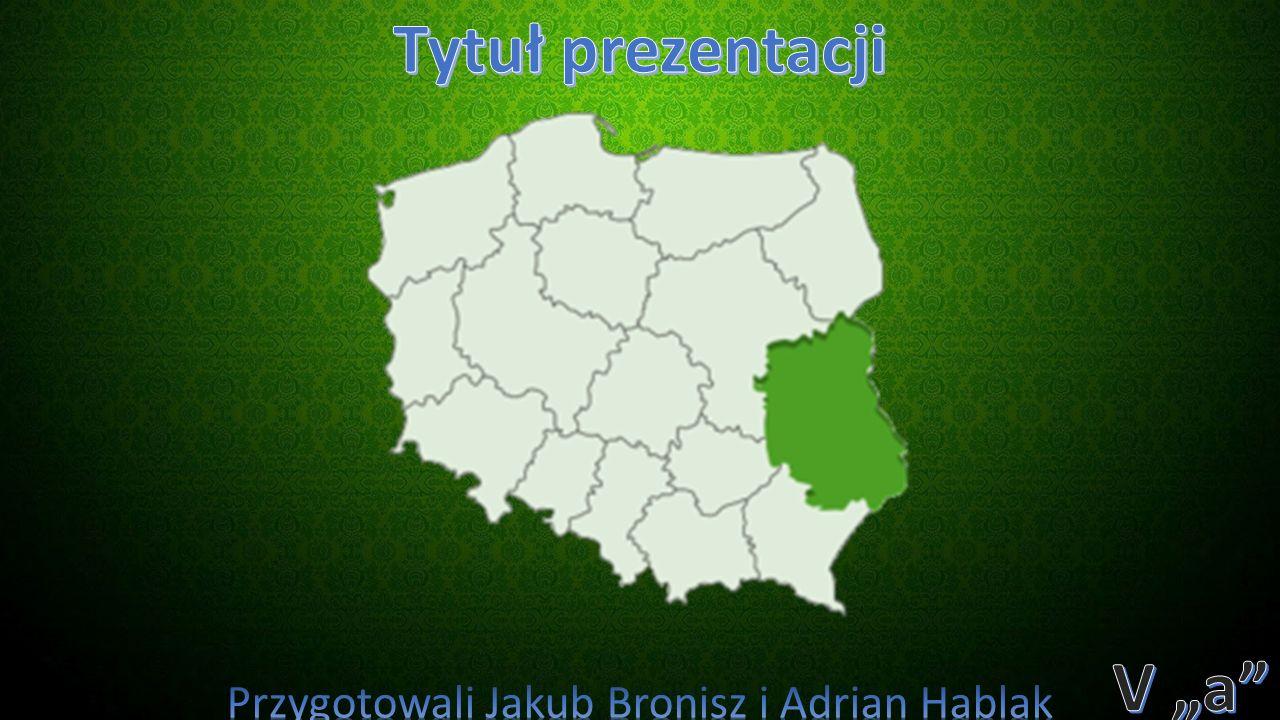 Przygotowali Jakub Bronisz i Adrian Hablak