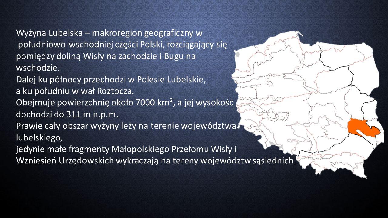 Wyżyna Lubelska – makroregion geograficzny w