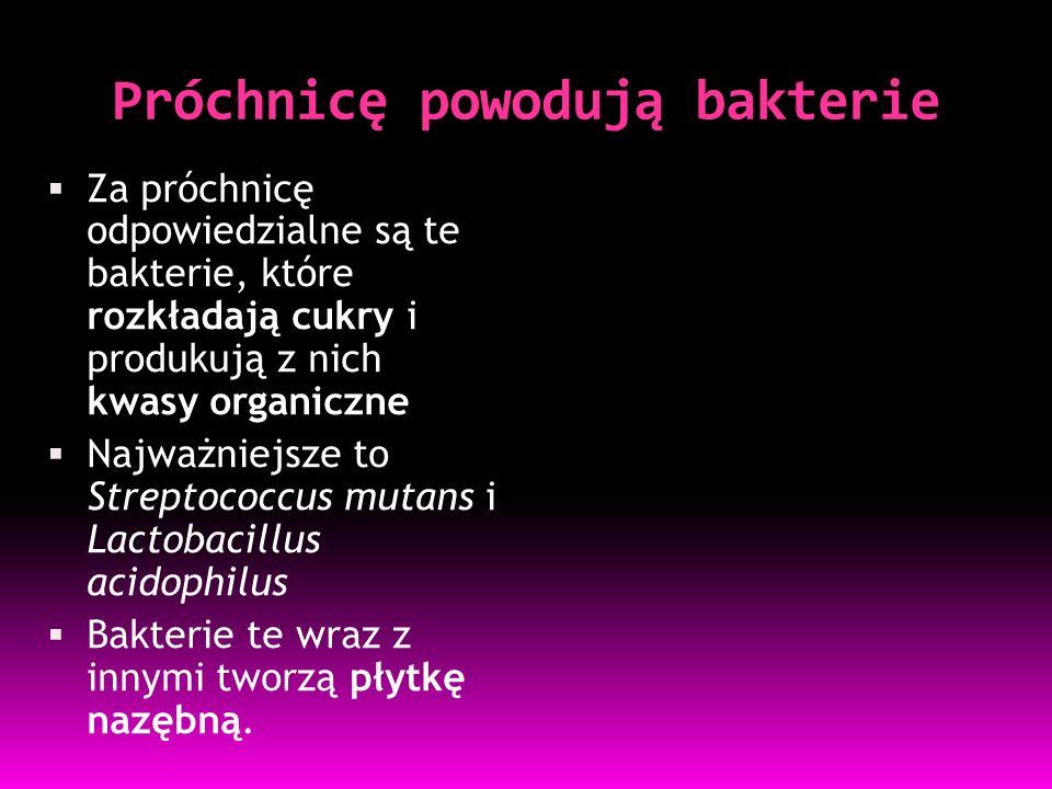 Próchnicę powodują bakterie