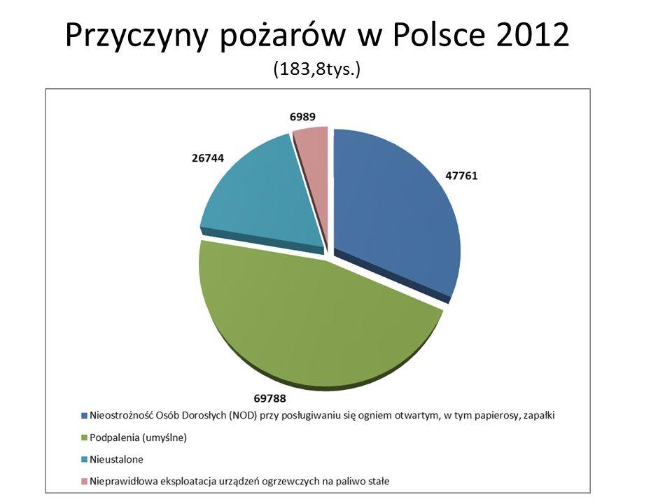 Przyczyny pożarów w Polsce 2012 (183,8tys.)