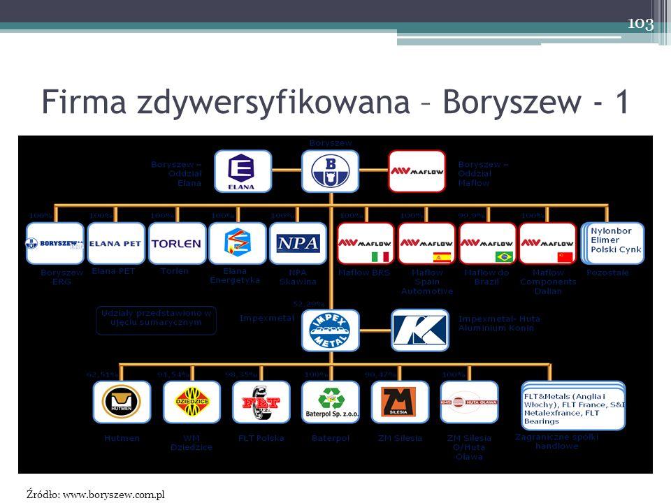 Firma zdywersyfikowana – Boryszew - 1