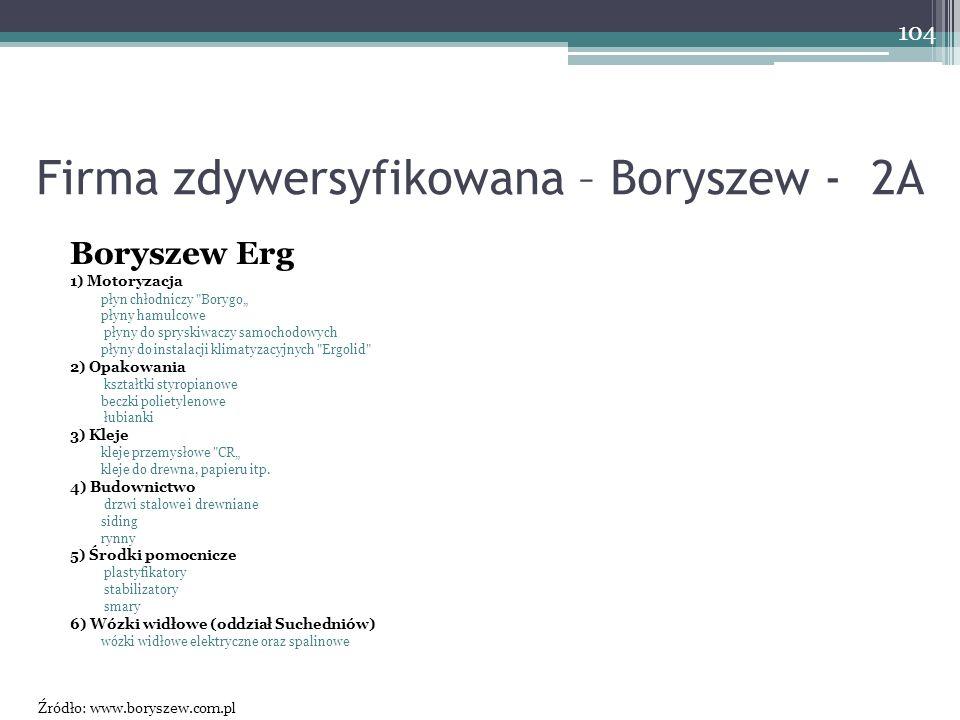 Firma zdywersyfikowana – Boryszew - 2A