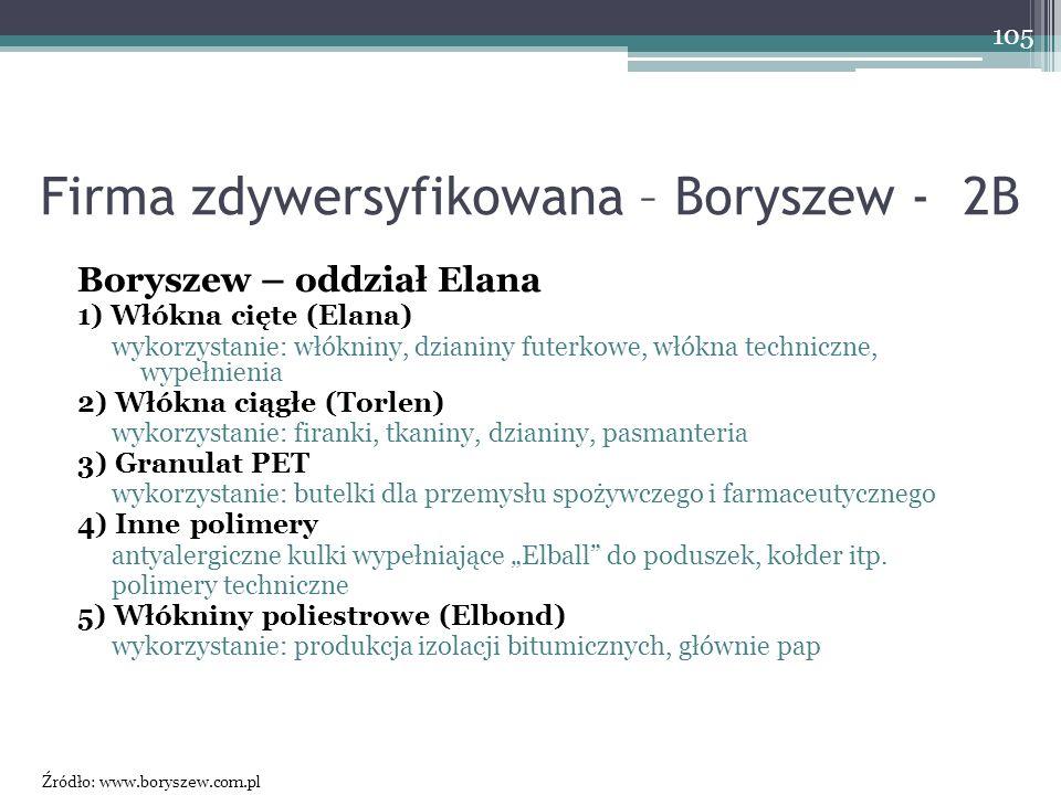 Firma zdywersyfikowana – Boryszew - 2B