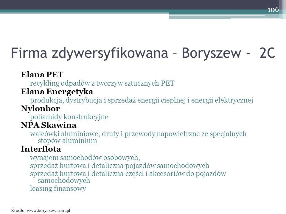 Firma zdywersyfikowana – Boryszew - 2C