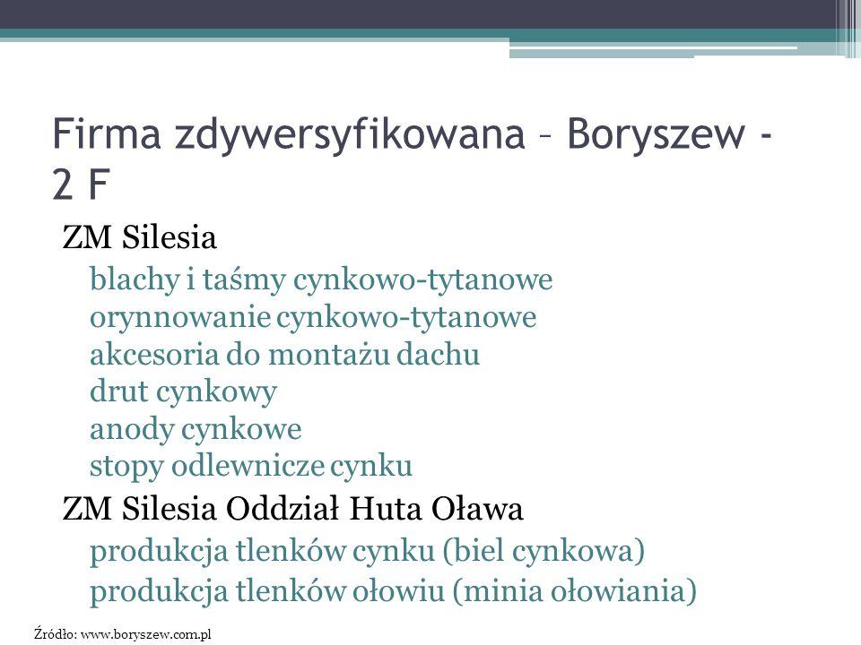 Firma zdywersyfikowana – Boryszew - 2 F