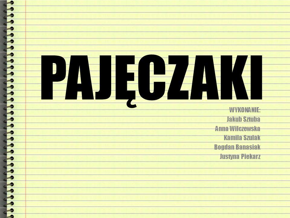 PAJĘCZAKI WYKONANIE: Jakub Sztuba Anna Wilczewska Kamila Szulak
