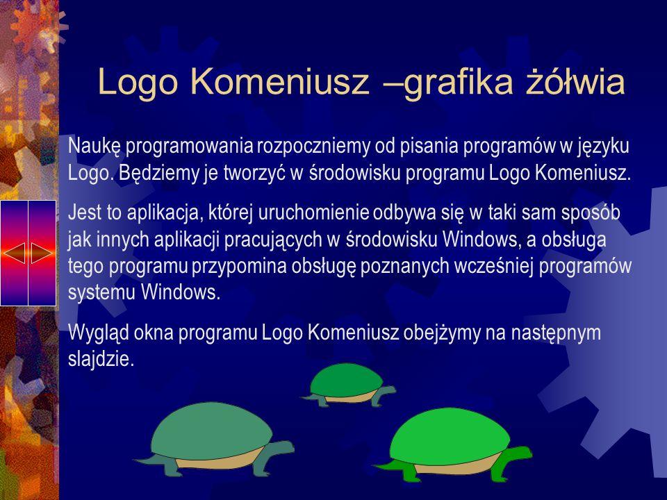 Logo Komeniusz –grafika żółwia