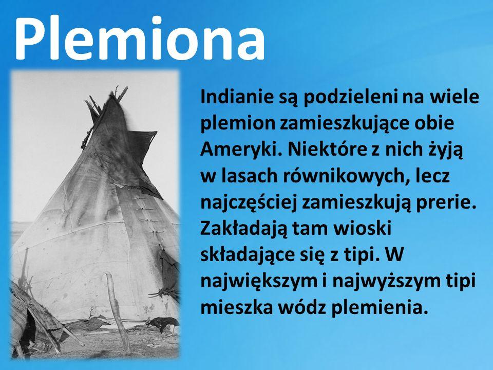Plemiona