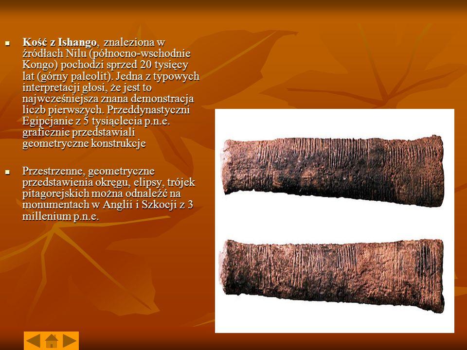 Kość z Ishango, znaleziona w źródłach Nilu (północno-wschodnie Kongo) pochodzi sprzed 20 tysięcy lat (górny paleolit). Jedna z typowych interpretacji głosi, że jest to najwcześniejsza znana demonstracja liczb pierwszych. Przeddynastyczni Egipcjanie z 5 tysiąclecia p.n.e. graficznie przedstawiali geometryczne konstrukcje