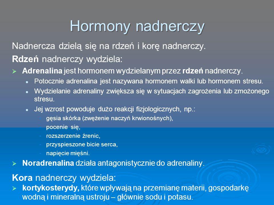 Hormony nadnerczy Nadnercza dzielą się na rdzeń i korę nadnerczy.